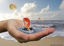исполнение желаний золотая рыбка